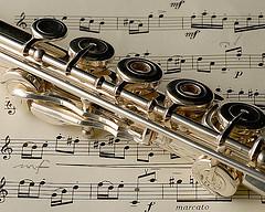 Professional Flute Repair and Professional Flute repad