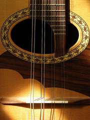 Professional Mandolin and Dulcimer Repair